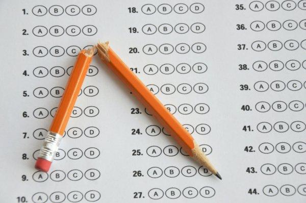 Standardized Test 600x398, Fatos Desconhecidos