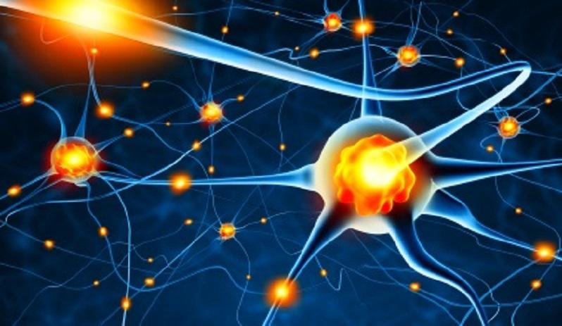 7 coisas que você não sabia sobre epilepsia