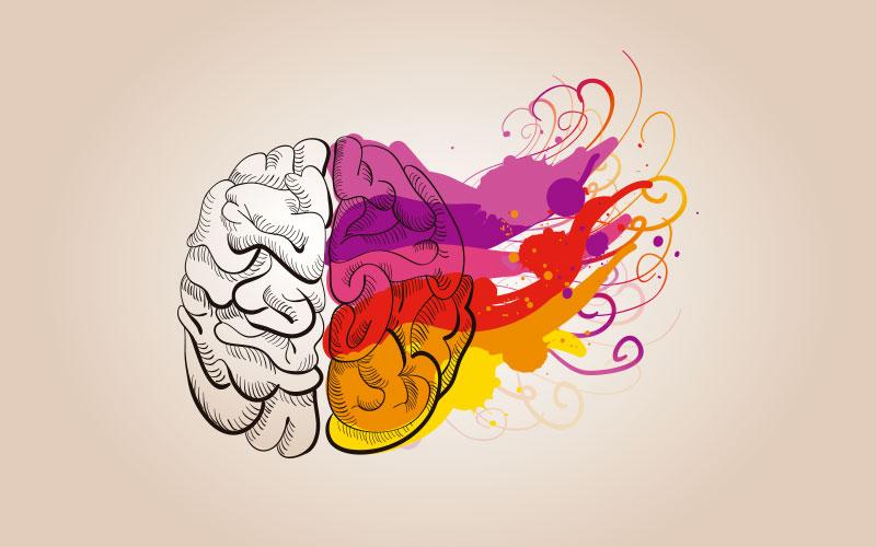 Você sabe como é o funcionamento do cérebro das pessoas criativas?