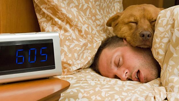 Estudo revela o que pode acontecer quando você dorme com seu animal de estimação