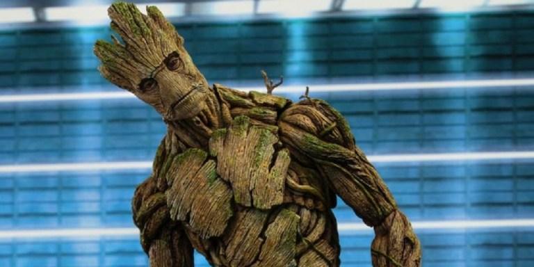 Cacto gigante idêntico ao Groot é encontrado nos Estados Unidos e imagem viraliza