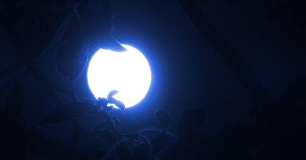 10 Blue Moon 000071876777 Small 600x315, Fatos Desconhecidos