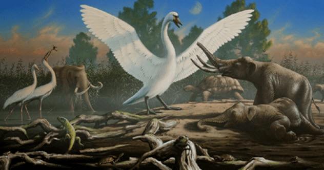 7 animais extintos e estranhos que você provavelmente nunca ouviu falar