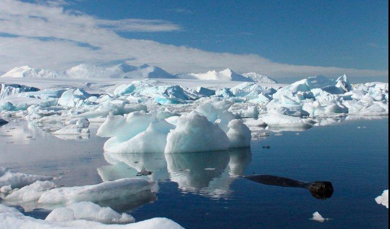 Mais da metade do gelo permanente do Ártico se desfez no últimos anos