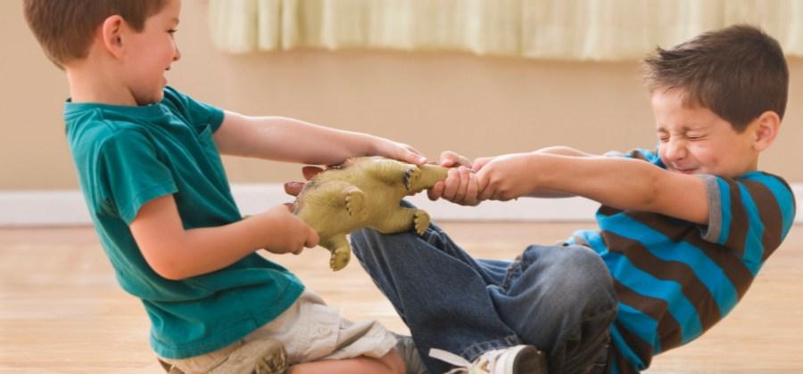 7f78ee6e7e4 Estudo diz que briga entre irmãos faz bem para saúde