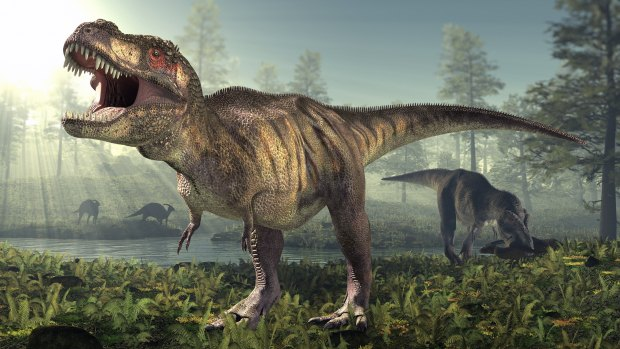 Para que serviam os bracinhos do tiranossauro rex?