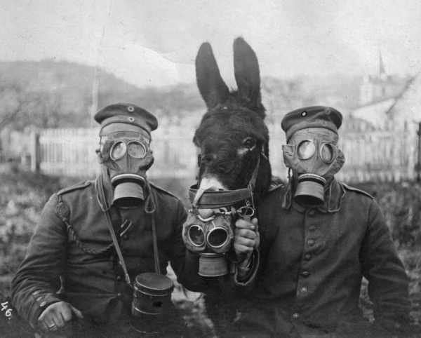 10 Lies That Tried Justifying World War I 8 600x482, Fatos Desconhecidos