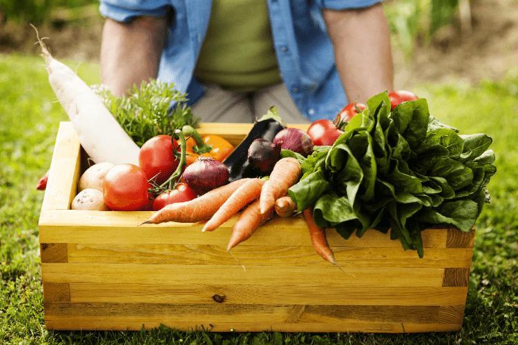 Aparentemente, alimentos orgânicos são piores para o meio ambiente