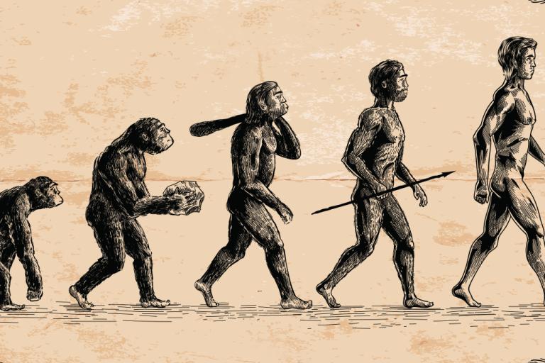 Como o ser humano será no futuro?