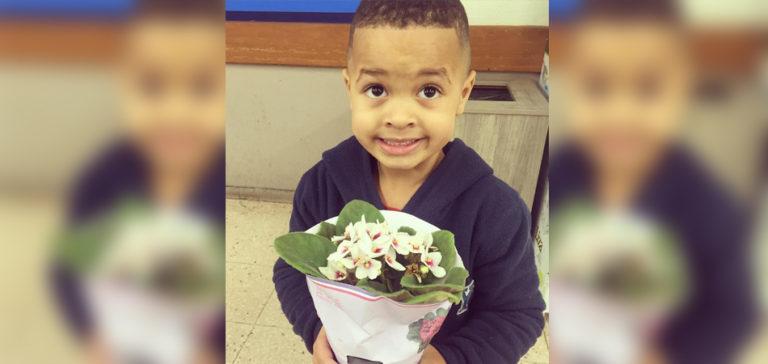 Garotinho leva flores e pede desculpas após dar empurrão em coleguinha