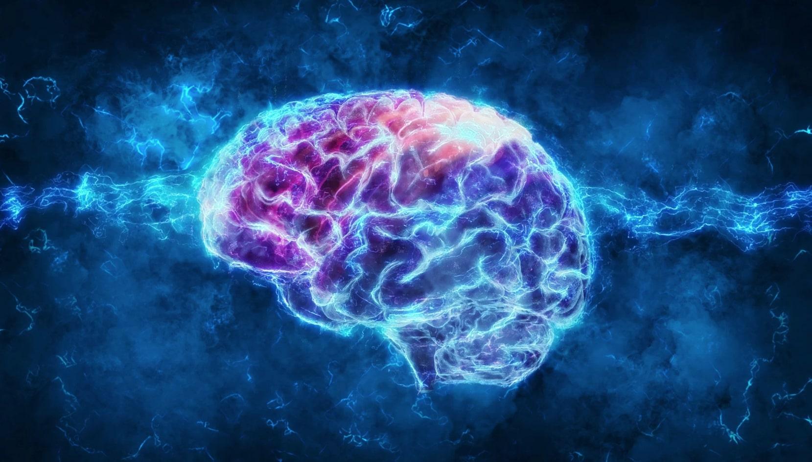 Esse neurocientista ensinou como rejuvenescer o cérebro