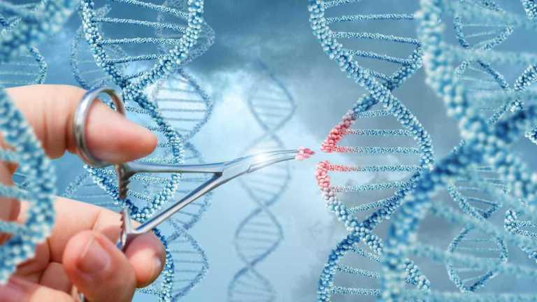 7 invenções genéticas que vão salvar o mundo
