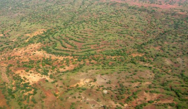 Grande Muralha Verde 5 600x349, Fatos Desconhecidos