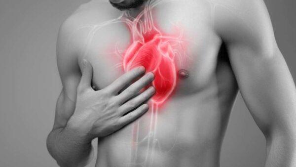 Batimento Cardíaco 600x338, Fatos Desconhecidos