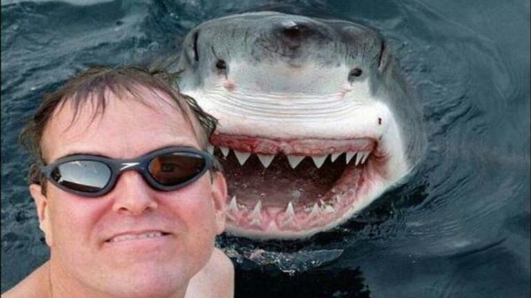 O que mata mais: selfies ou ataques de tubarões?