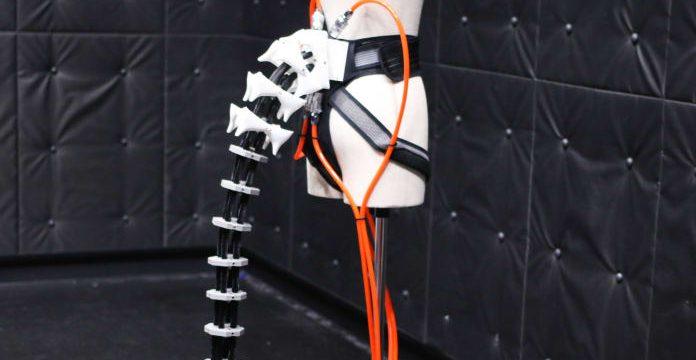 Japoneses desenvolvem cauda humana, entenda