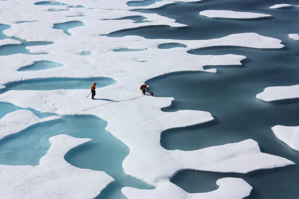 O que pode acontecer com a elevação da temperatura da Terra?