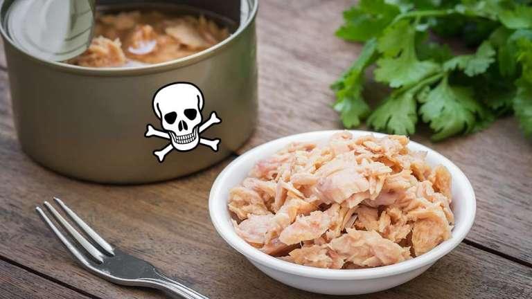 Entenda porque comer muito atum pode te envenenar