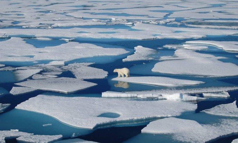 Quando o gelo do Polo Norte desaparecerá completamente?