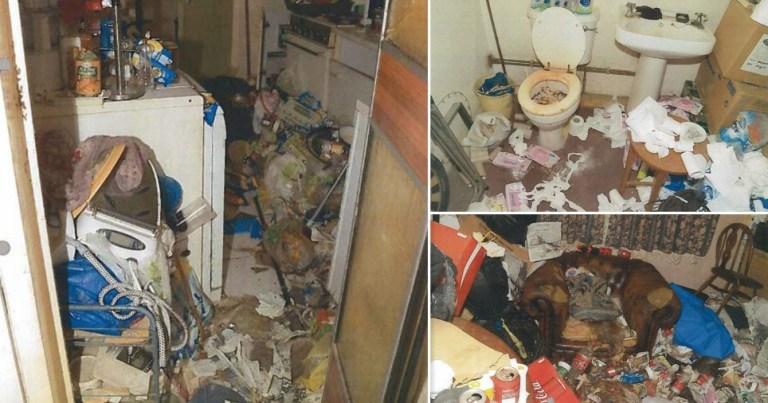 Acumulador assassino: ele deixou a esposa apodrecer no meio do lixo