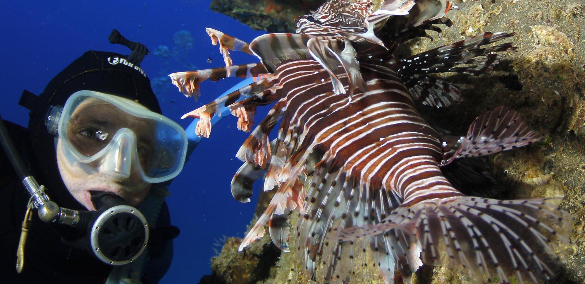 7 criaturas mais invasivas da Terra