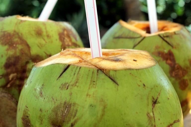 Como é que a água entra dentro do coco?