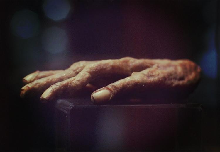 """Você já ouviu falar da """"Mão da Glória"""" e seus poderes mágicos?"""