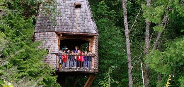 Conheça essa escola localizada no meio da floresta