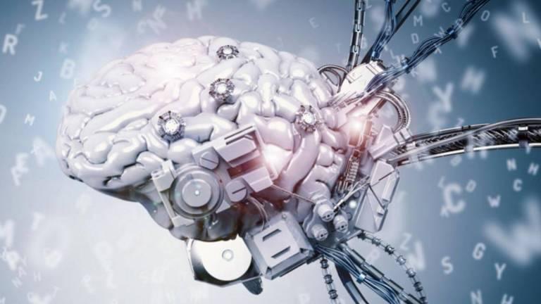 Entenda como os neurônios de um rato conseguem se comunicar com a internet