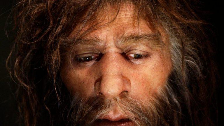 Simulação de supercomputador revela o motivo da extinção dos neandertais