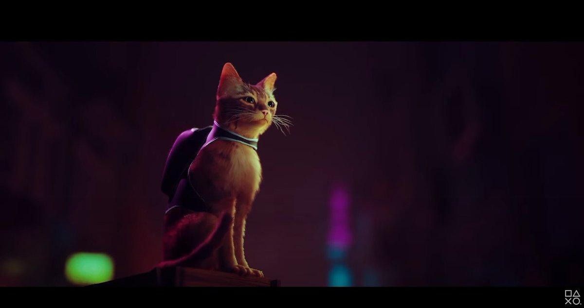 Jogo de Playstation 5 te coloca na pele de um gato de mochila que resolve crimes