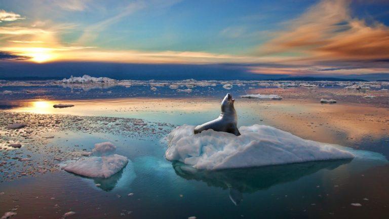 Groenlândia quebrou um recorde de milênios e perdeu um milhão de toneladas de gelo por minuto