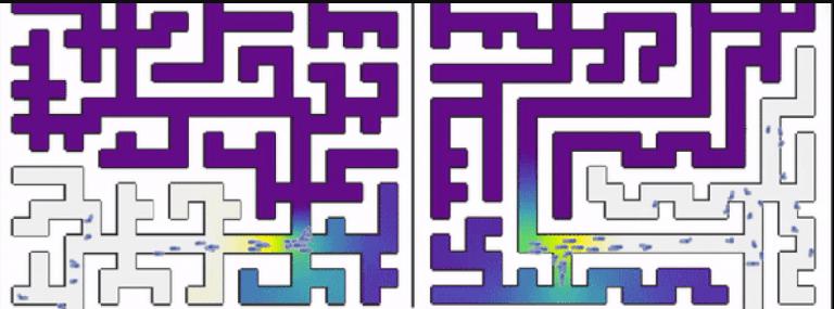 Célula simples resolve um dos labirintos mais infames do mundo