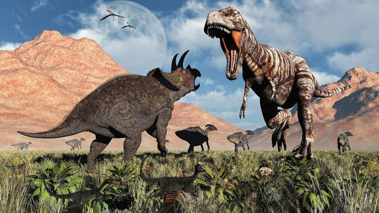 Fóssil incrível mostra a luta entre um T. Rex e um Tricerátops