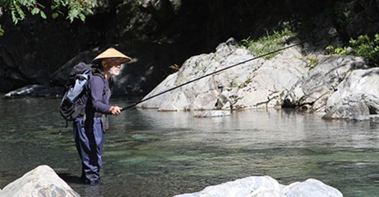 A antiga arte de pescar peixes pequenos no Japão