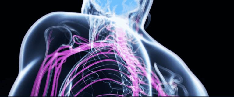 Terapia controversa com células tronco ajudou a reparar lesões na medula espinhal de 13 pessoas