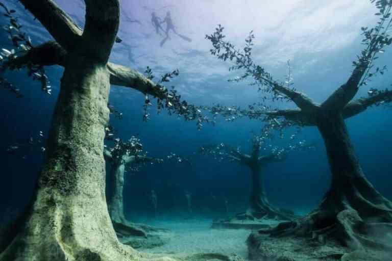 Esse artista criou uma floresta alagada em um museu subaquático