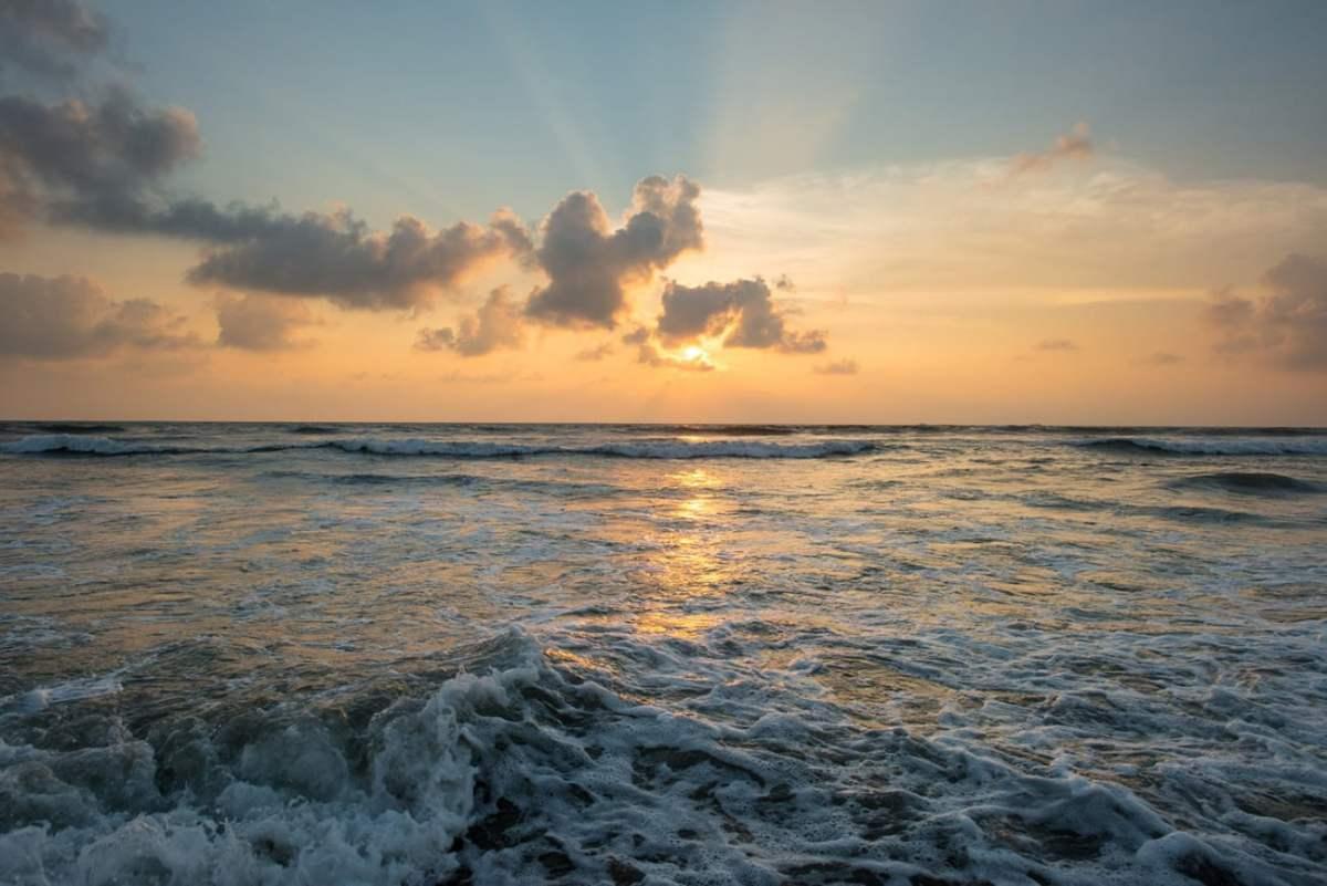 Oceano1, Fatos Desconhecidos