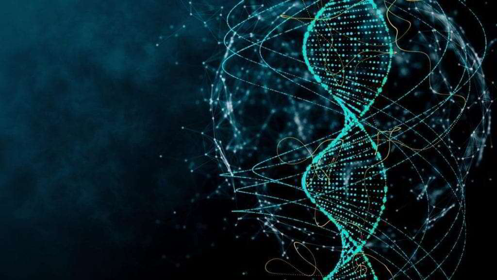 DNA dos mamíferos carrega um cemitério de vírus que pode ter uma finalidade crucial
