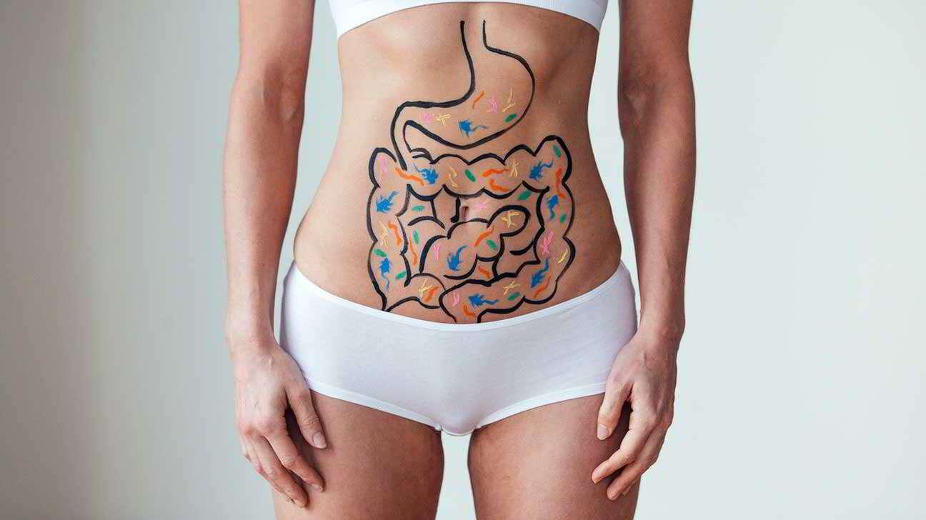 """Ter bactérias intestinais """"boas"""" pode ajudar na perda de peso"""