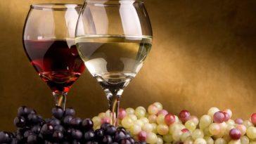 Benefícios do Vinho Para Saúde Comprovados Cientificamente fatos e eventos (3)