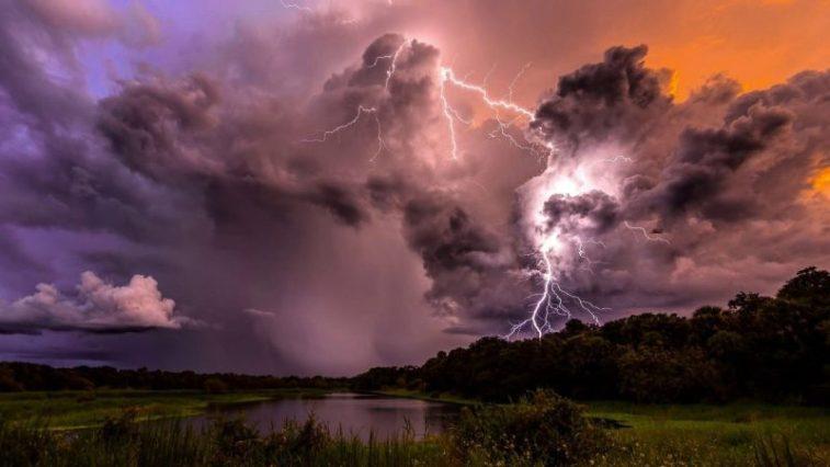 imagens da natureza nova odessa fatos e eventos (6)