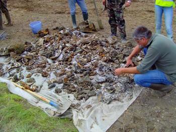 Un grand nombre de pièces à identifier et à nettoyer!