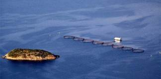 oppdrett nordlaks fiskebøl oppdrettsanlegg
