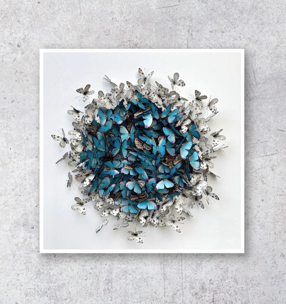 Cluster Sphere - Morpho & White