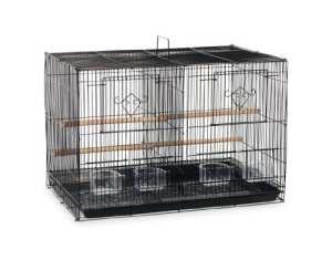 Prevue Hendryx spf063Flight Cage pour divisé, Noir