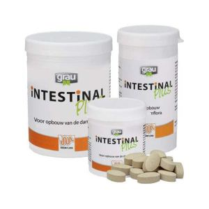 Grau Intestinal Plus – 300 Comprimés