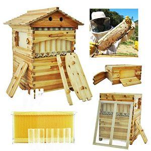 MUKEZON Lot de 7 Cadres en Forme de Ruche à Miel avec boîte en Bois de cèdre