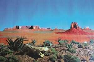 Trixie Mur arrière pour terrarium double face avec motif du désert/Steppe, 150x 60cm, Lot de 4