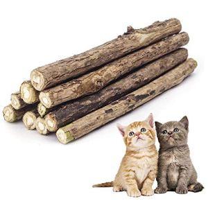 Colonel Cook®-Matatabi Lot de 10 ✮✮Marque Française+Garantie A Vie✮✮-cataire/Catnip Bio Naturel pour Protection Soins dentaires-Herbe a Chat goût Menthe Lutte Contre la Mauvaise haleine-Jouet Chats